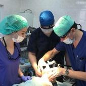 Лазерное лечение сосудистых патологий